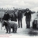 Montreurs d'ours en Ariège