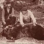 Chasse à l'ours.Trophée