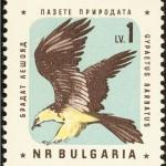 Gypaète.Timbre bulgare