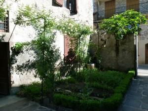 Jardin de Curé. Les roses