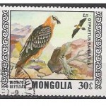 Gypaète. Timbre mongol