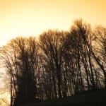 Ciel d'Ariège69
