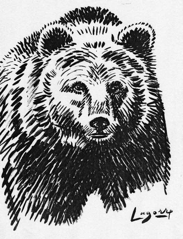 Le bouquetin des pyr n es capra pyrenaica pyrenaica - Dessin d un ours ...