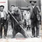 Ariège.Montreur d'ours