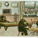 Carte. Ours jouant au billard