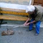 la pique à bois