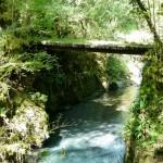 Vallée d'Estours. passerelle fer et béton