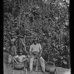 Sumatra Malacca. Orangs atchés