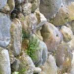 Seix. Mur de la chapelle ND de Pitié